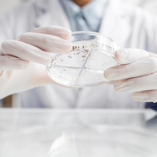 생명 공학 실험실에서 페트리 접시를 가진 연구원 무료 사진