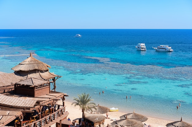 Restaurant on the sea shore with coral and fish underwater Premium Photo
