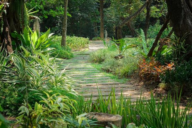 Resting place, garden, forest Premium Photo