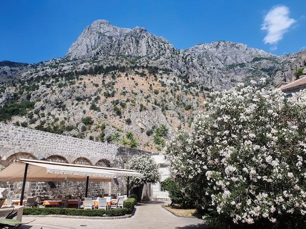 休憩ゾーン、コトル、モンテネグロのロッキー山脈 無料写真