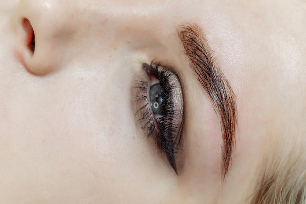 Результат перманентного макияжа, татуажа бровей в салоне красоты Premium Фотографии