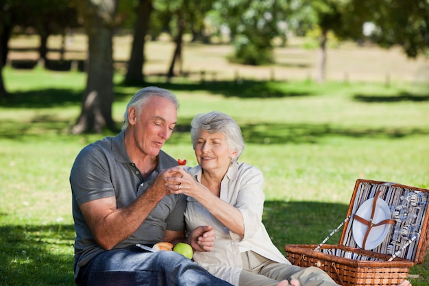 Retired couple picnicking in the garden Premium Photo