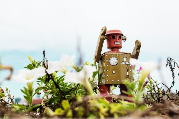Retro tin robot toy playing in the garden Free Photo