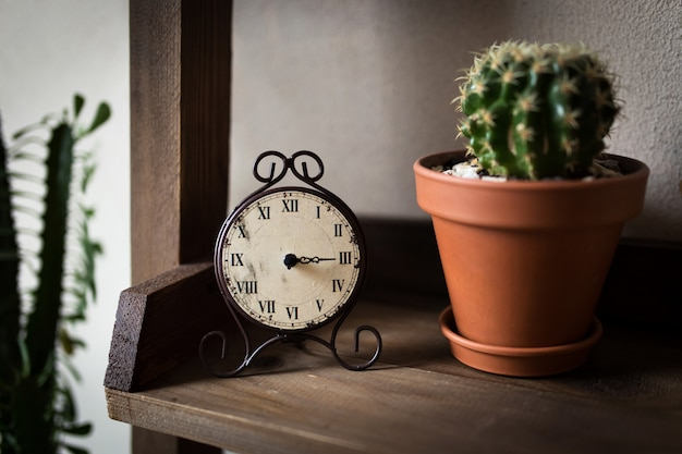 Retro-watches. on the shelf with a cactus in a pot. Premium Photo