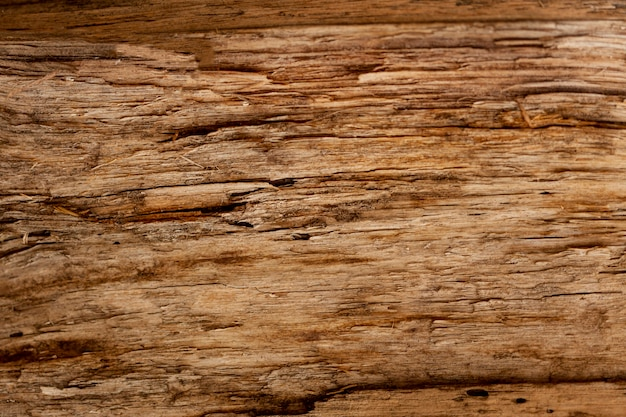 Retro wood surface with chipping Free Photo