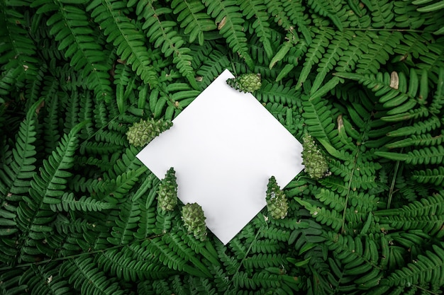 Rhombus paper frame on a green floral background Premium Photo