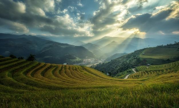 Rice fields on terraced of mu cang chai, yenbai, vietnam. Premium Photo