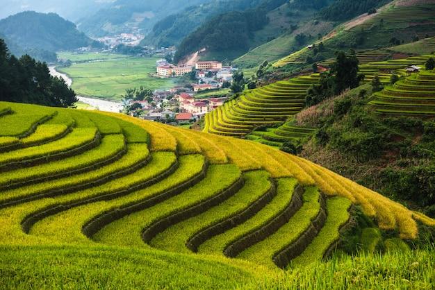 Rice terrace mountains in mu can chai, vietnam Premium Photo