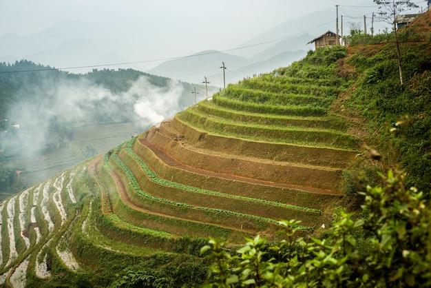 Rice terraces in sapa, vietnam Premium Photo