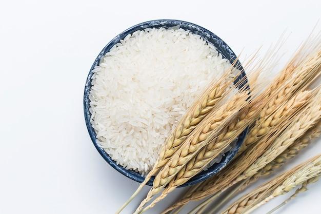 Rice Free Photo