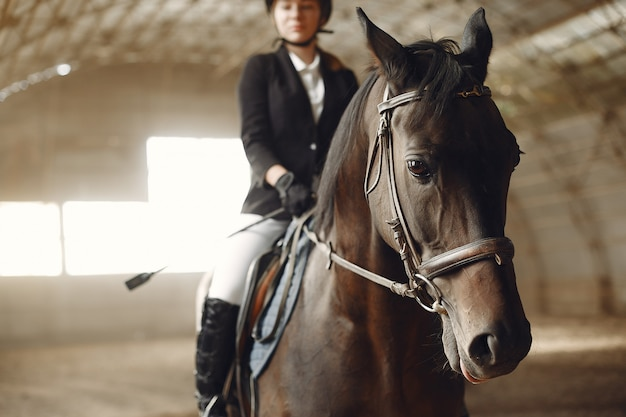 Всадник тренируется с лошадью Бесплатные Фотографии