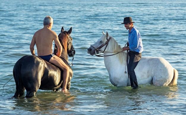 Всадники и лошади в море Premium Фотографии