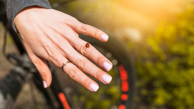 Ring and ladybug on a woman hand Free Photo