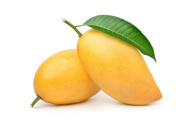 Ripe mango with green leaf isolated on white Premium Photo
