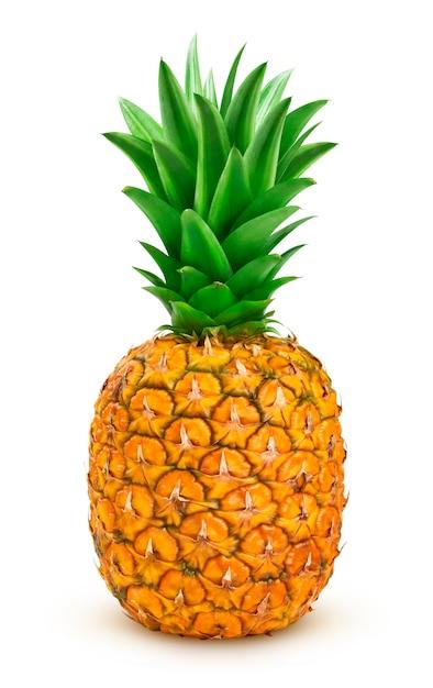 Ripe pineapple isolated Premium Photo