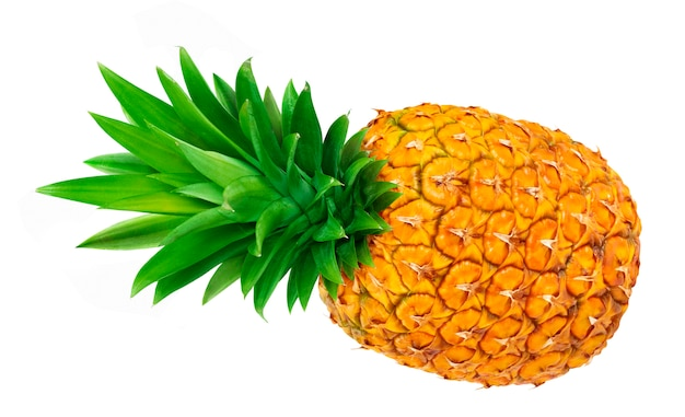 Ripe pineapple isolated Premium Photo