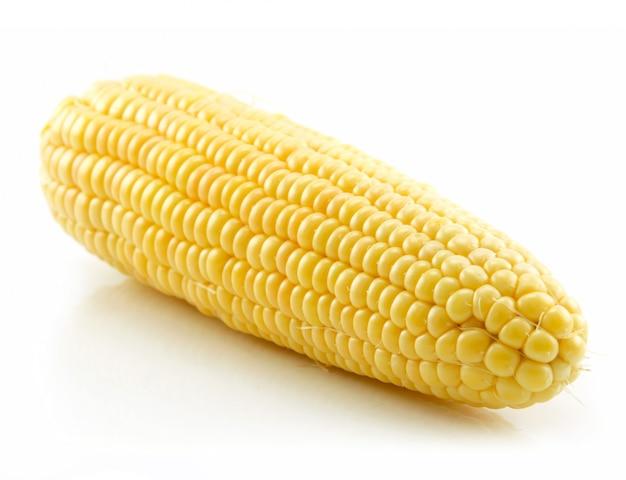 Ripe yellow corn isolated on white Premium Photo