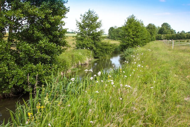River in the countryside in spring Premium Photo