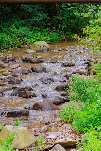 River stream flowing over rock formations the mountains. Premium Photo