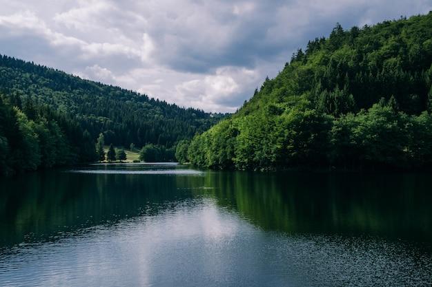 Fiume circondato da foreste sotto un cielo nuvoloso in turingia in germania - ottimo per concetti naturali Foto Gratuite