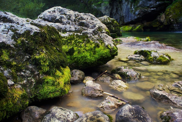 River surrounded by rocks covered in mosses under the sunlight in bovec in slovenia Free Photo