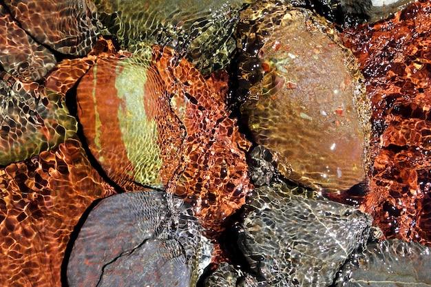 River water bottom stream red rocks transparency Premium Photo