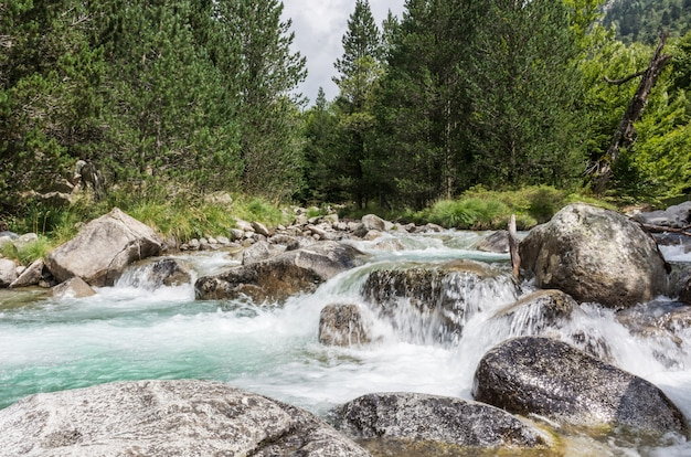 A river Premium Photo