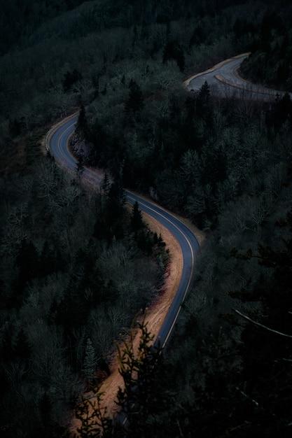 녹색 풍경으로 둘러싸인 도로 무료 사진
