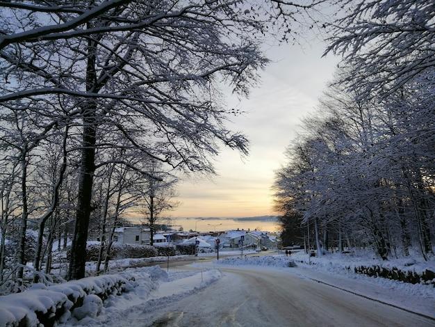 ノルウェーのラルヴィークの日没時に雪に覆われた木々や建物に囲まれた道路 無料写真