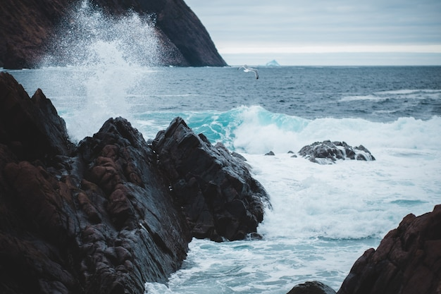Rock formation on the ocean photography Free Photo