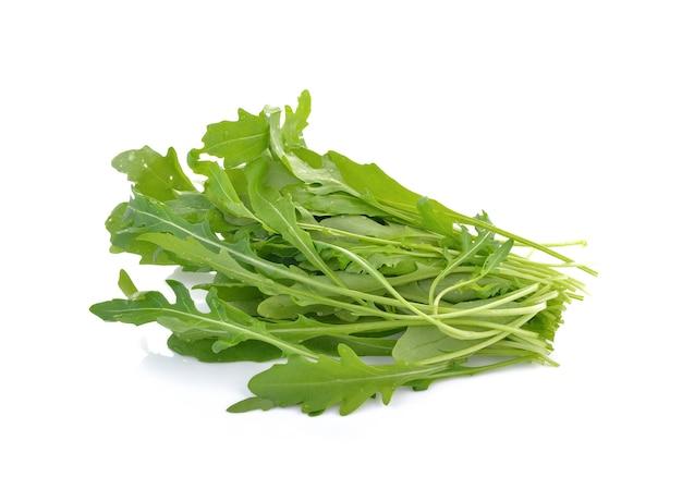 白で隔離されるロケットレタスの葉または甘いルッコラサラダ Premium写真