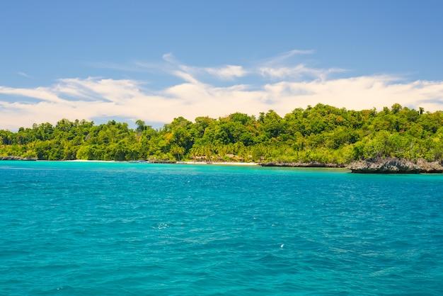 Rocky coastline covered by dense lush green jungle in the colorful sea of the remote togean islands Premium Photo