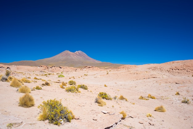 Rocky desert and steaming volcano in the distance Premium Photo