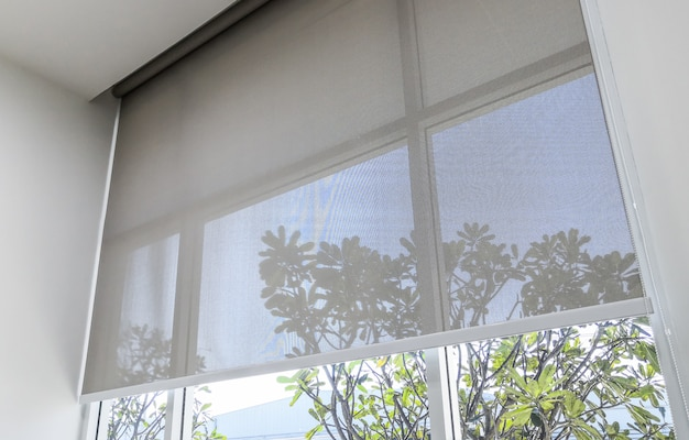 Roll blinds on the windows, the sun does not penetrate the house. Premium Photo