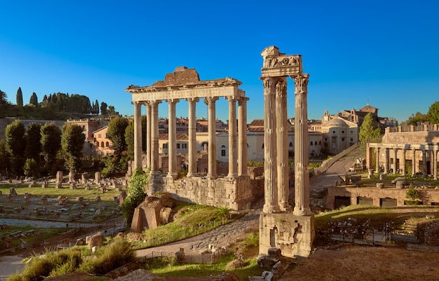 Roman forum or forum of caesar, in rome, italy Premium Photo