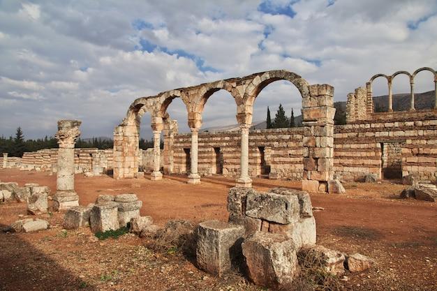 Roman ruins in anjar, lebanon Premium Photo