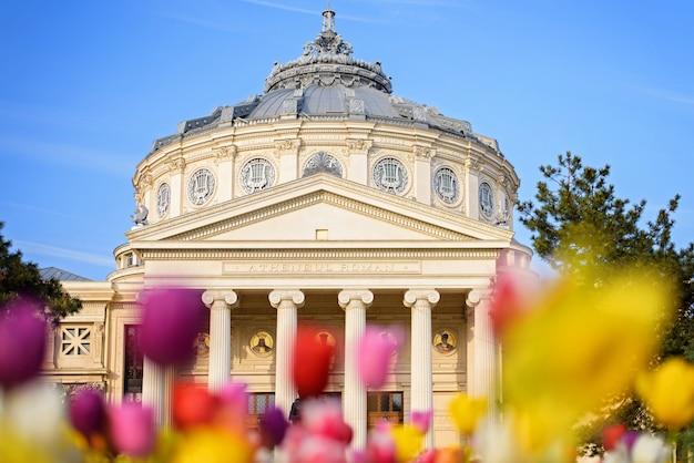 Romanian athenaeum in bucharest Premium Photo