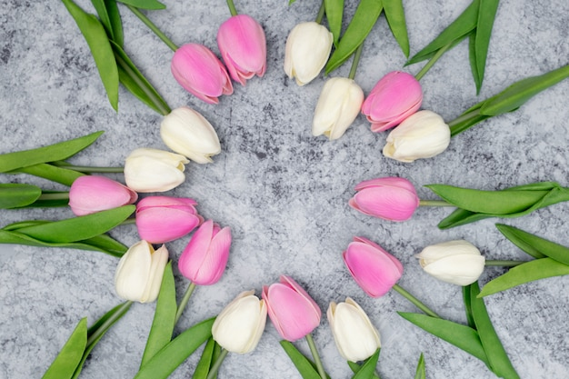 Romantic composition made with white and pink tulips Free Photo