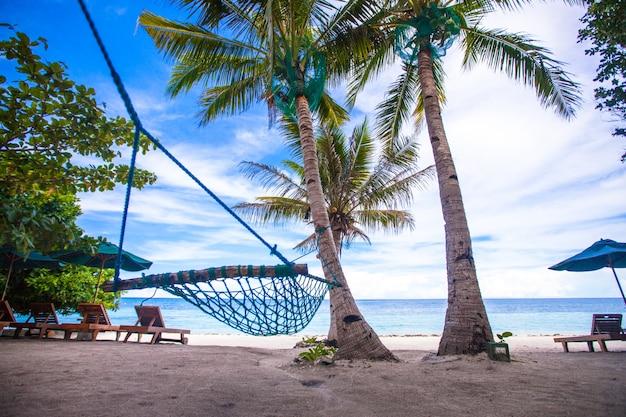 Romantic cozy hammock in the shadow of palm on tropical beach Premium Photo