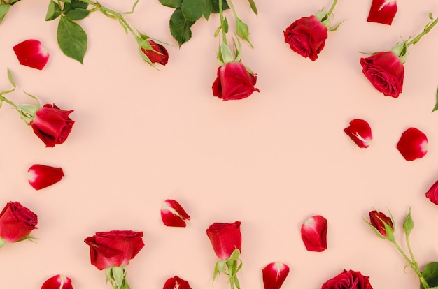 Romantic roses and petals top view Free Photo