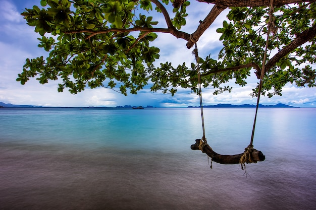 Rope swing on the beach with tree branches, long exposure, smooth sea Premium Photo