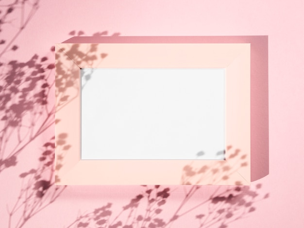 Rose background with a rose photo frame and branch shadows Free Photo