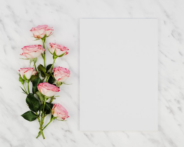 Rose bouquet with blank card Free Photo