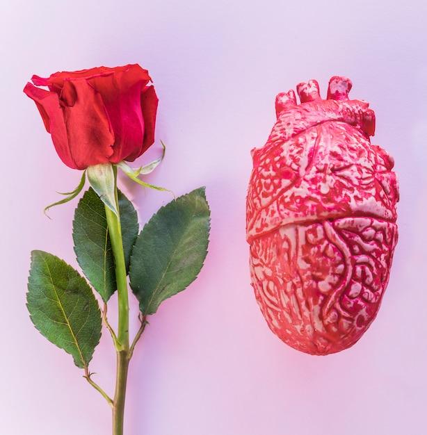 Ramo di rose con cuore umano in ceramica Foto Gratuite