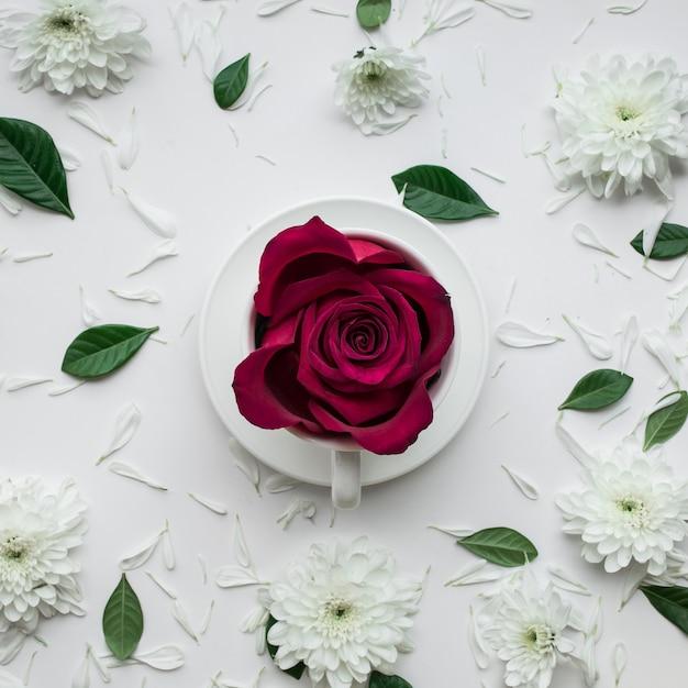 白い背景の上のコーヒーカップのバラの花。 Premium写真