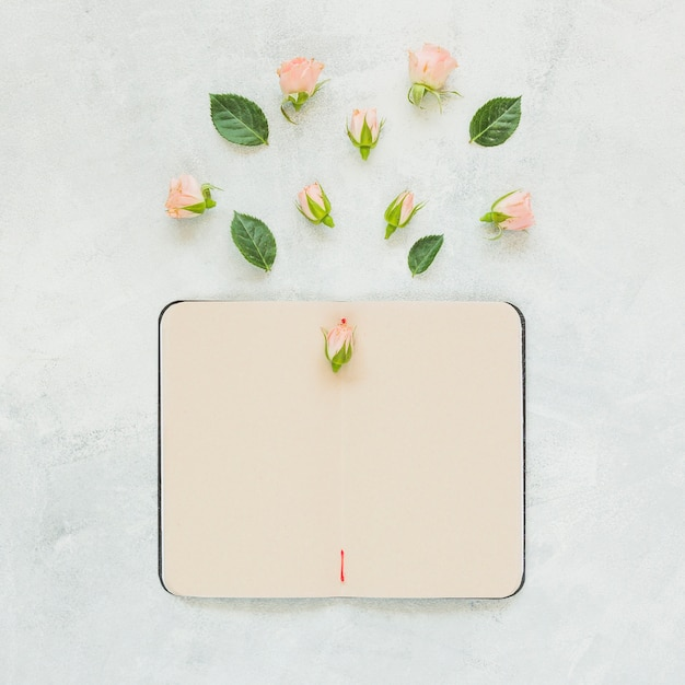Rose flower and leaves over the blank notebook against concrete backdrop Free Photo