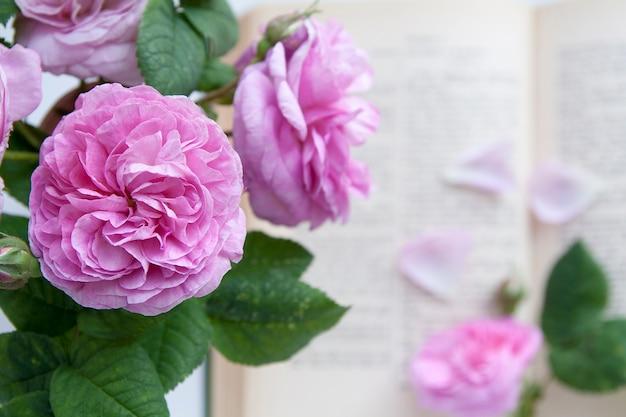 開いた聖書の背景にバラの花 Premium写真