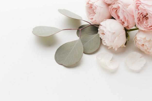Розовые цветы с композицией из листьев Бесплатные Фотографии