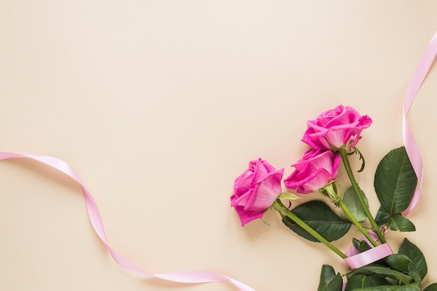 Rose flowers with ribbon on table Free Photo