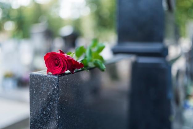معنی و مفهوم گلهای مورد استفاده در تاج و سبد گل ترحیم